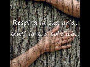 AbbracciareAlberi_3