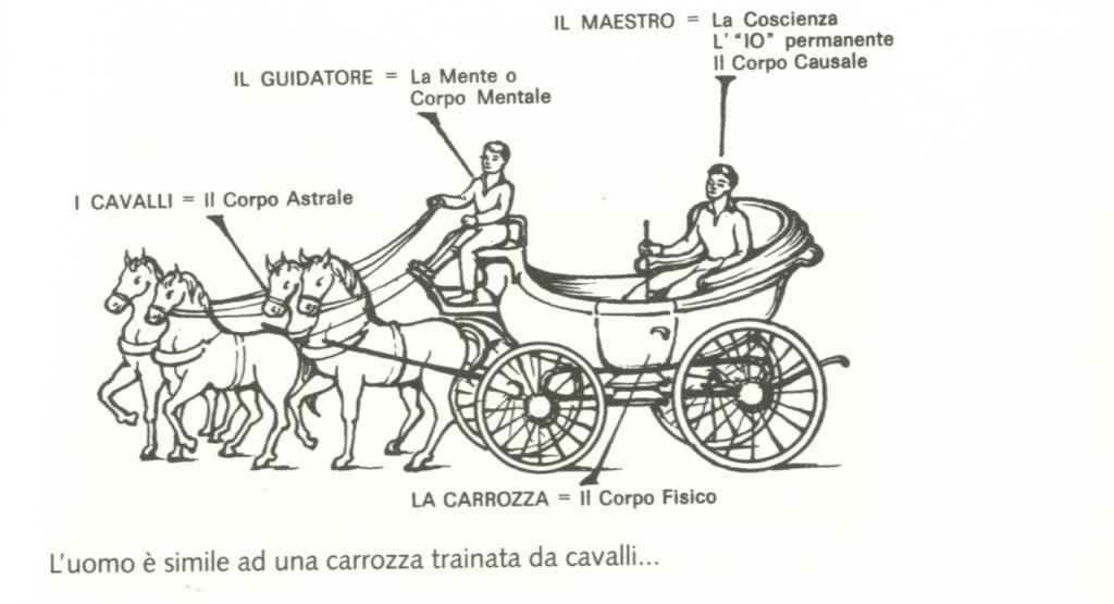 MetaforaDellaCarrozza